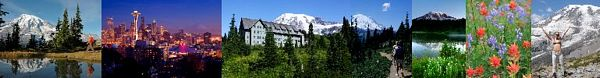 Mt. Rainier Visitor Guide and Vacation Travel Planner